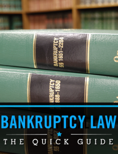 Bankruptcy Laws in the US